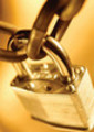 Thumbnail 530 Security Articles - High Quality Articles - PLR
